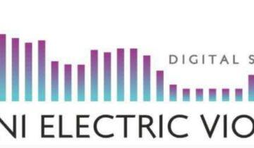Dani Electric Violin